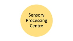 sensory processing centre