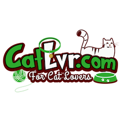 CatLvr.com - For CAT Lovers
