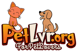 PetLvr.org - For PET Lovers