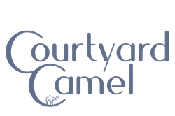 Courtyard Camel